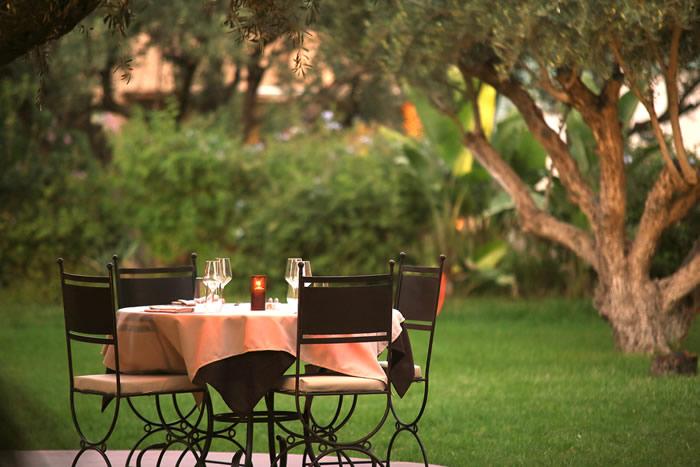 déjeuner à l'ombre d'oliviers centenaires la Paillote restaurant Marrakech